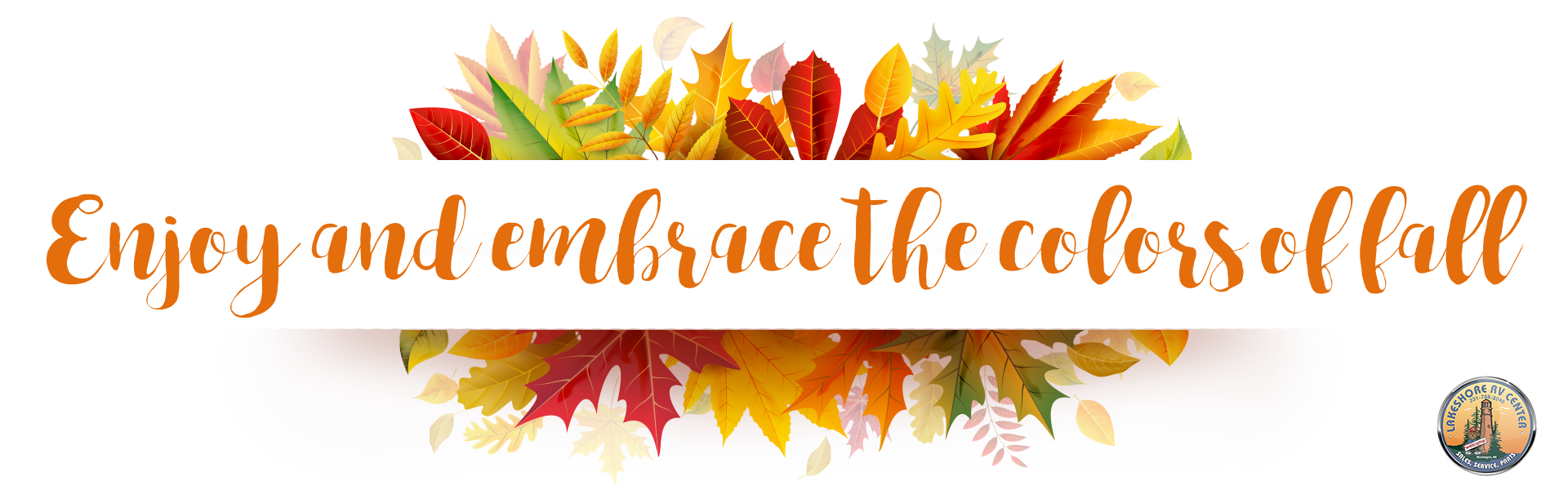 enjoy and embrace the colors of fall