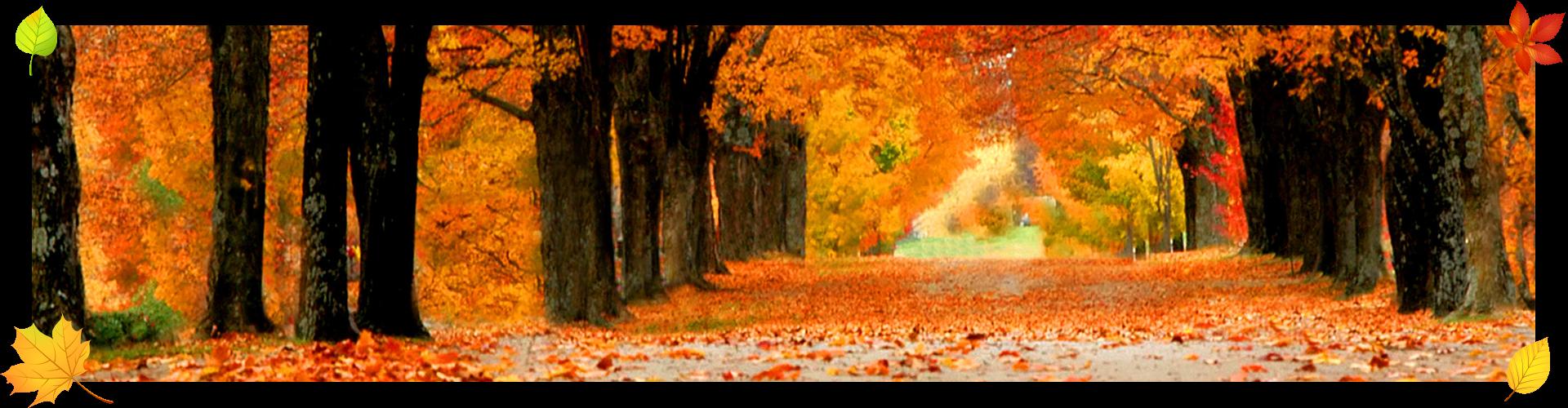 planning an rv michigan fall color tour lakeshore rv blog