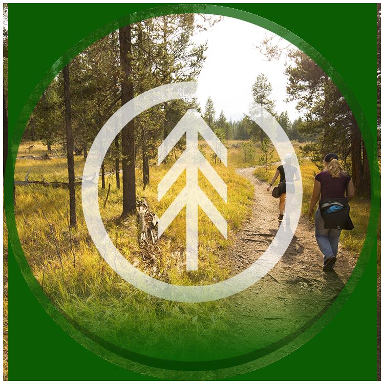 Timber Ridge Trails