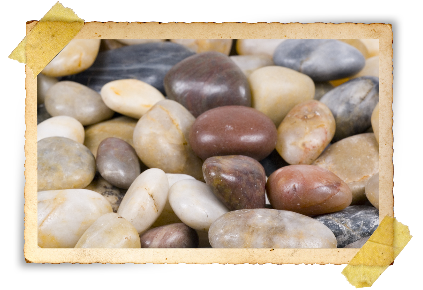 COLLECT ROCKS FROM DIFFERENT LOCATIONS