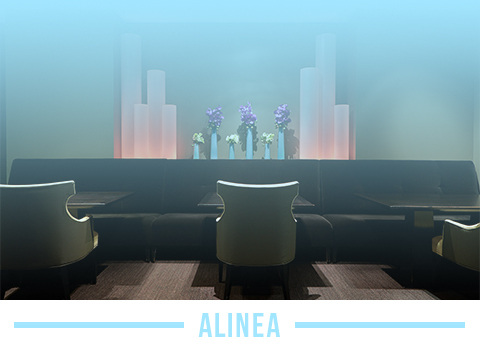 Experience a new kind of restaurant at Alinea
