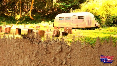 Travel trailer in the woods