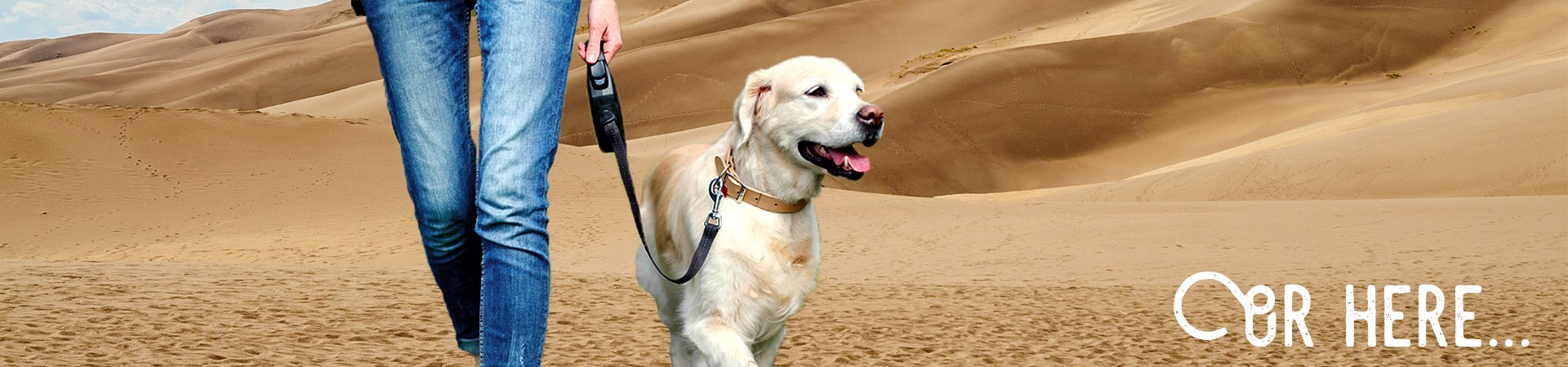 great-sand-dunes-national-park-preserve