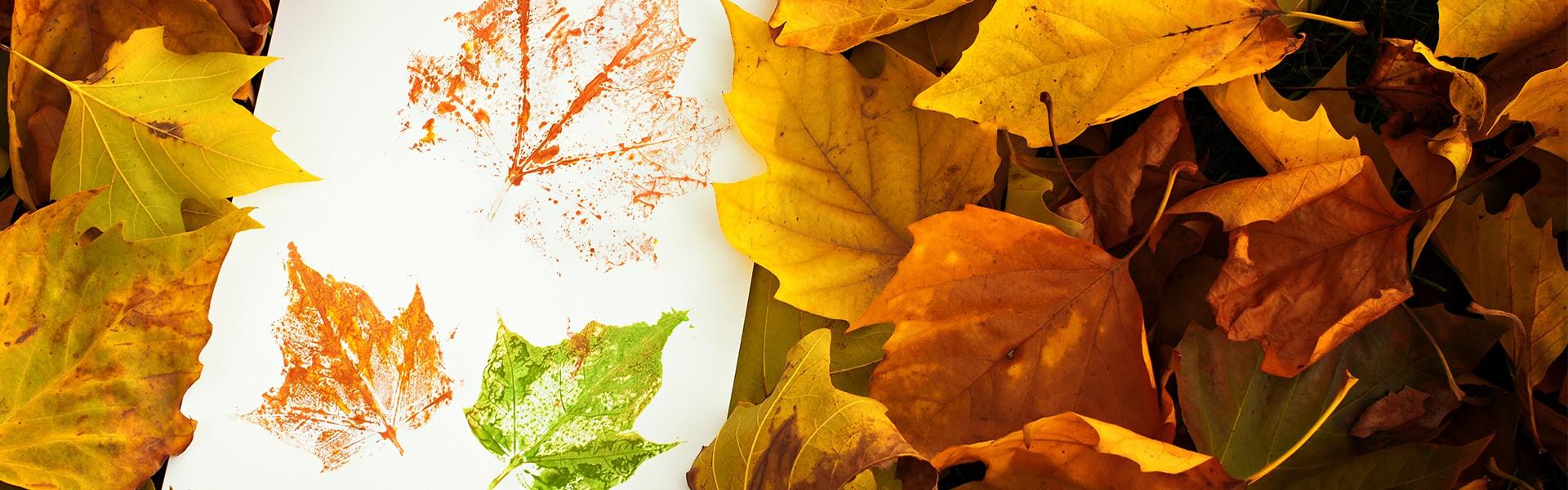 leaf rubbing
