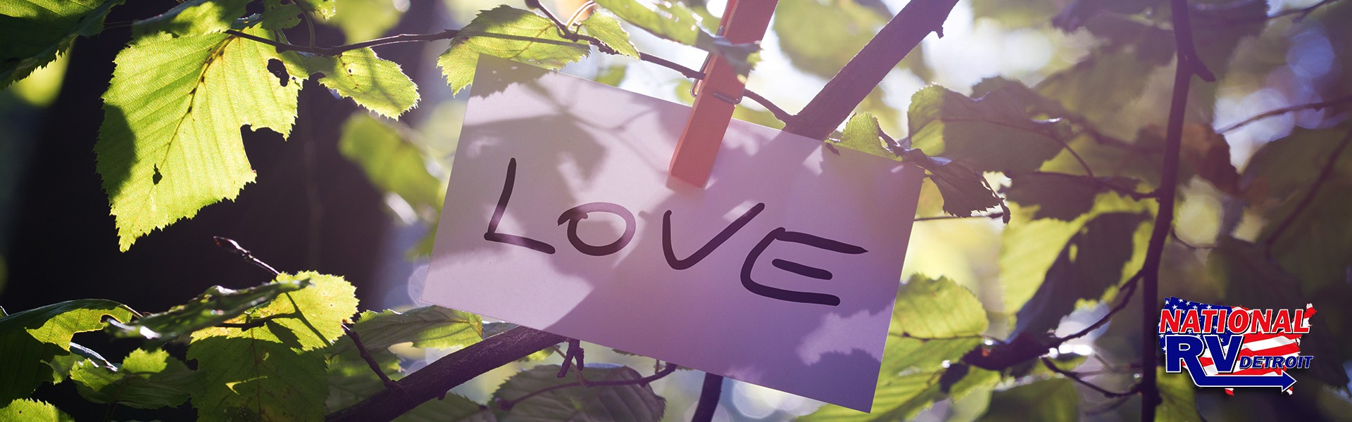 Love note on a tree branch