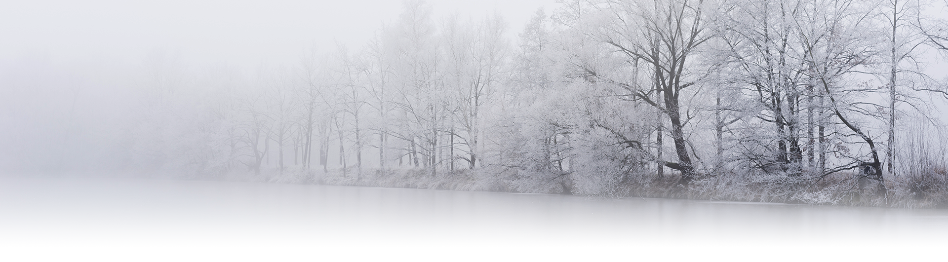 Photography Tips for Perfect Snowy Photos: White-out conditions