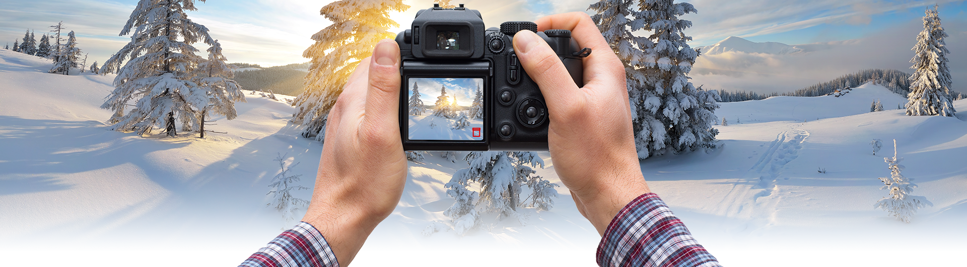 Photography Tips for Perfect Snowy Photos: Don't delete photos while outside