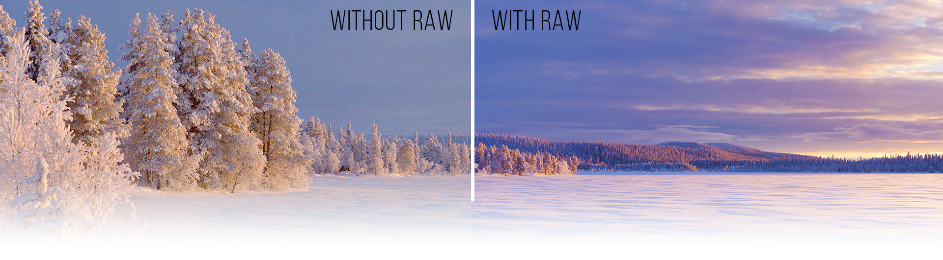 Photography Tips for Perfect Snowy Photos: Using RAW