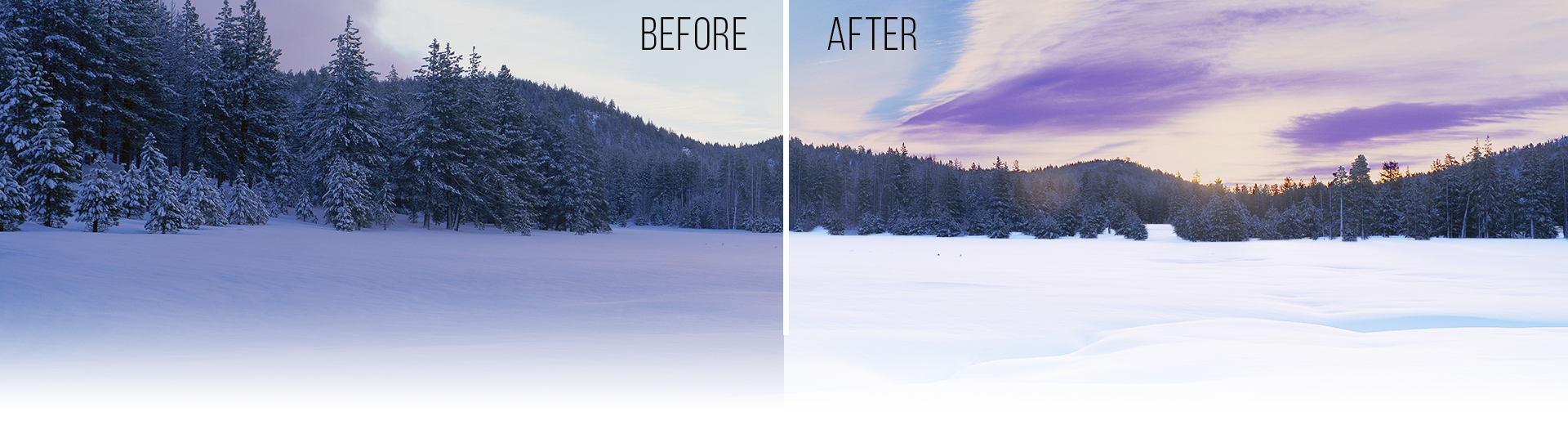 Photography Tips for Perfect Snowy Photos: Don't be afraid of light