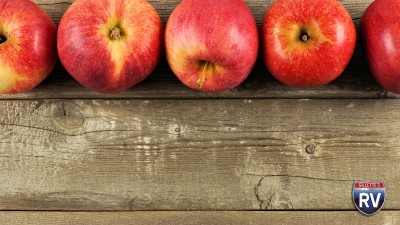 Apples On A Picnic Table