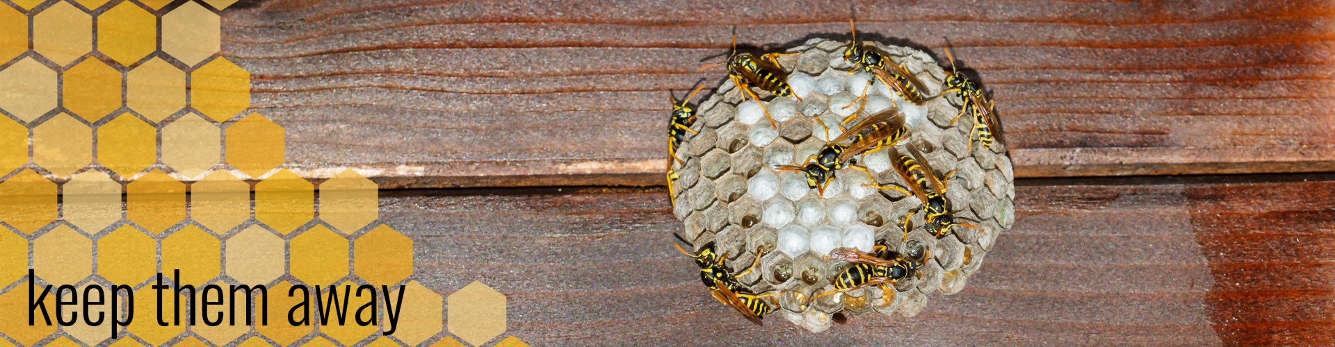 preventing bees wasps nests RV camping