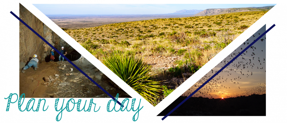 Planning your day at Carlsbad Caverns National Park