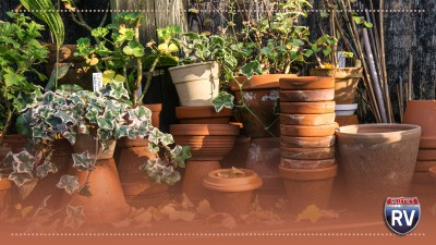 Uses for Terracotta flower pots