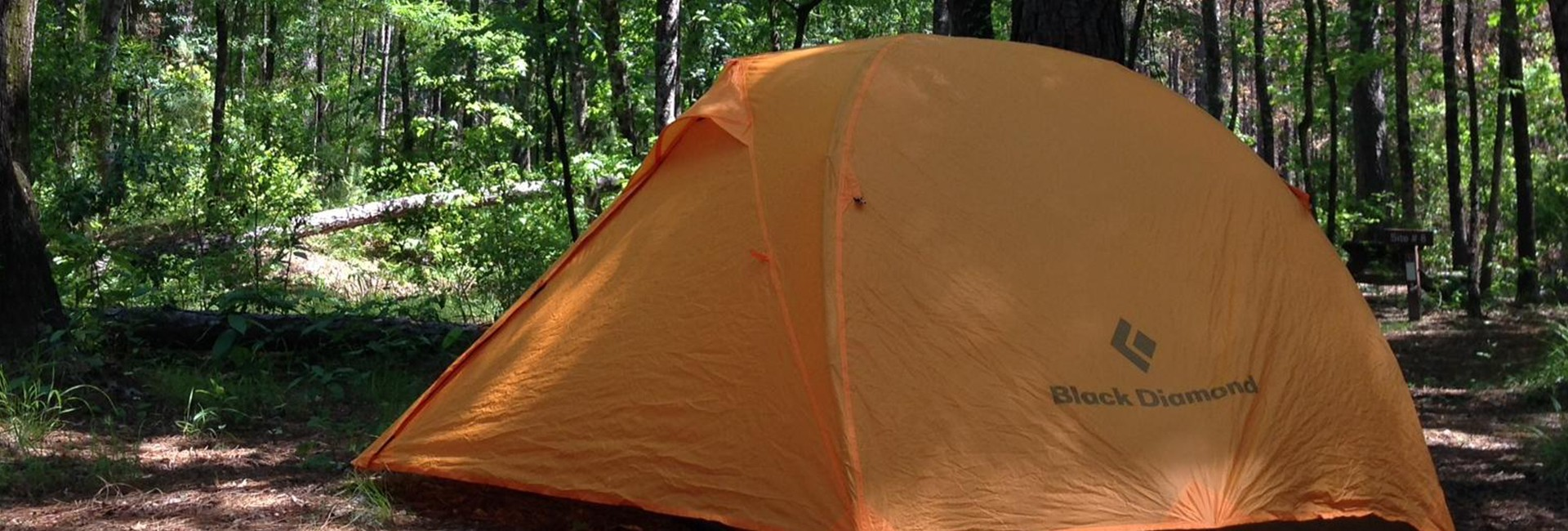 Camping near Congaree National Park in Hopkins, SC