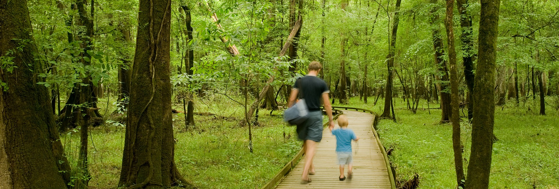 Hiking in Congaree National Park in Hopkins, SC