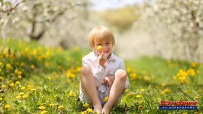 Happy little boy sitting in field of flowers with caption of Happiness is…