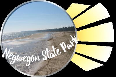 Negwegon State Park