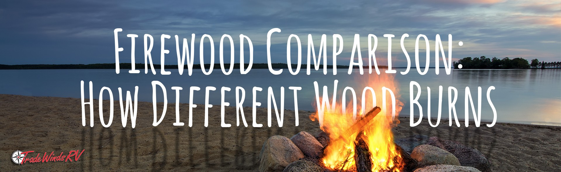 Firewood Comparison- How Different Wood Burns