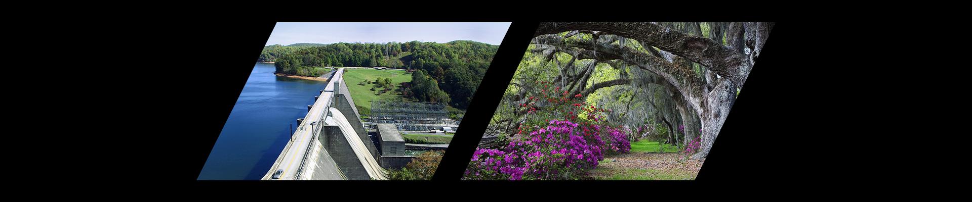 Norris Dam and the Magnolia Plantation