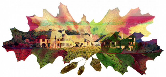 Fall leaves with image of Chateau Chantal winery.