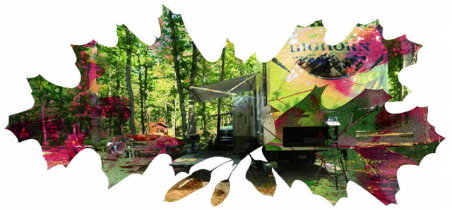 Fall leaves with image of Timber Ridge RV and Recreation Resort.