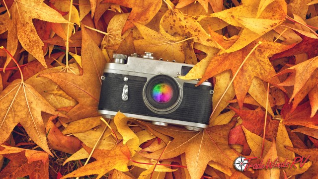 Capturing Fall Colors