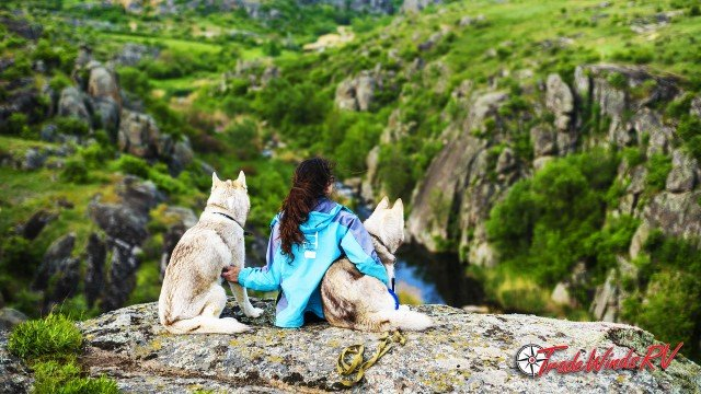 Woman Hiking With Her Dogs In The Mountains