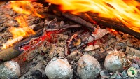 Using Campfire To Cook Onions