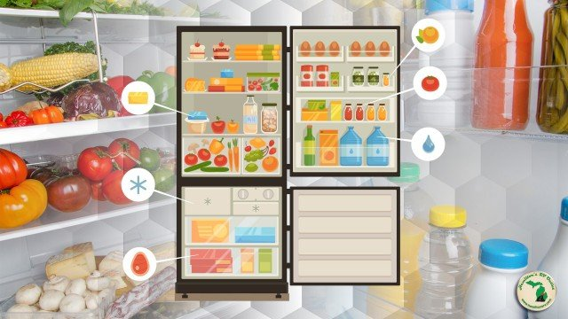 How To Organize Your RV Fridge Feature