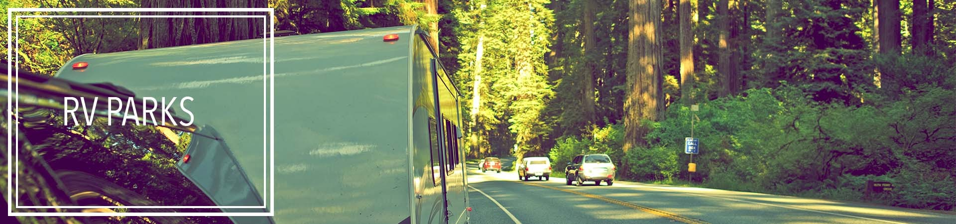 rv parks in the redwood forest