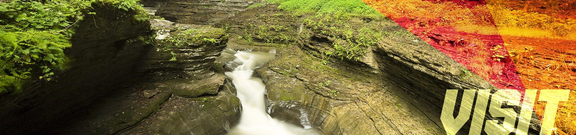 Visit - Watkins Glen Gorge in New York
