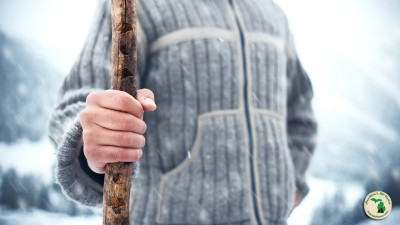 Make your own walking stick