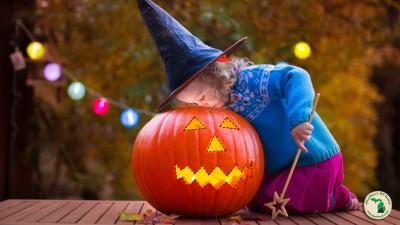 Little Girl Looking Into Cut Out Pumpkin