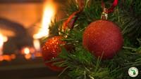 Happy Holidays! RV Christmas Tree Ideas