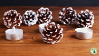 Candles and pinecones for fall/winter decorations.