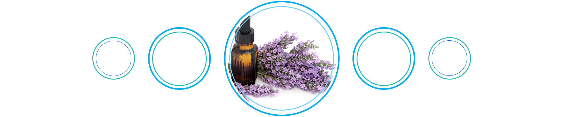 Fight those winter blues with lavender