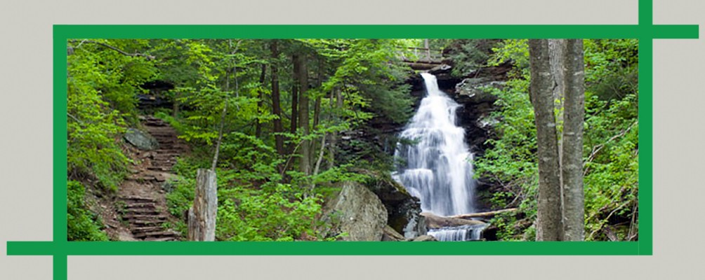 Visit Ricketts Glen State Park