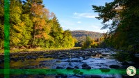 World's End State Park, Pennsylvania