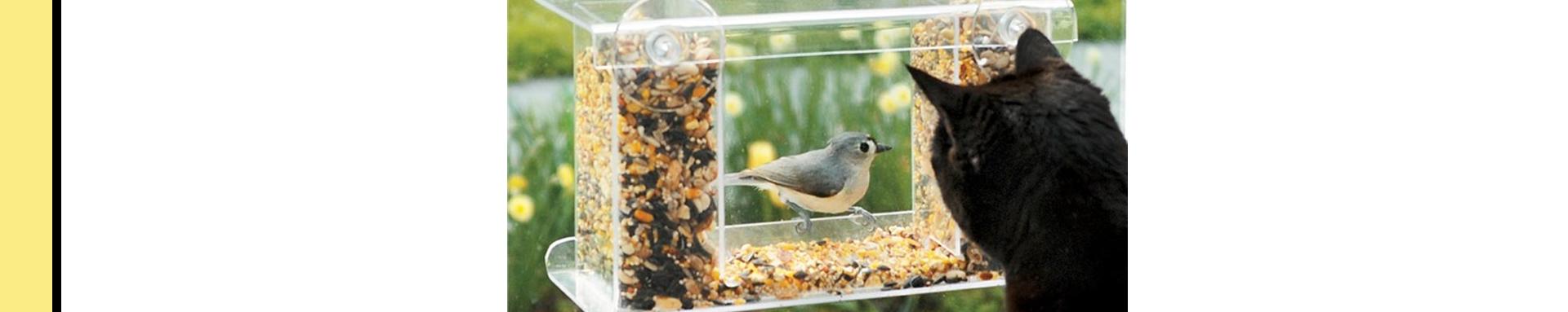 peak-a-boo bird feeder