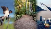 Rare birds, park pathways and fishing at Leelanau State Park