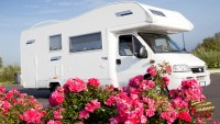 Plants that Withstand the RV Life FI