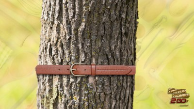 Kitchen Supplies With Belt On A Tree