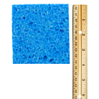 Use a ruler to measure the size of your sponge.