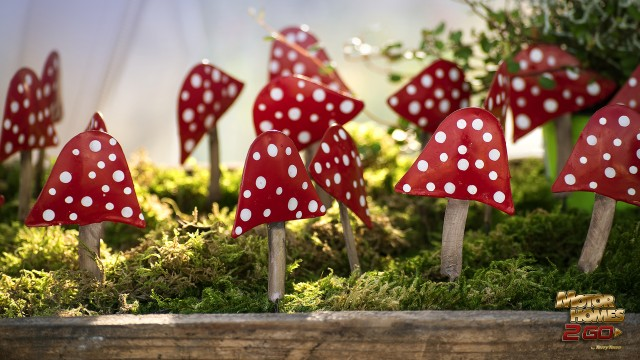 Toadstool Crafts
