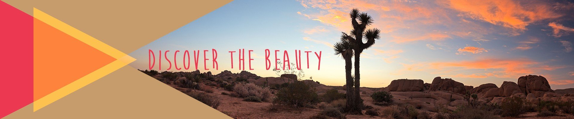 Discover the beauty - Joshua Tree National Park