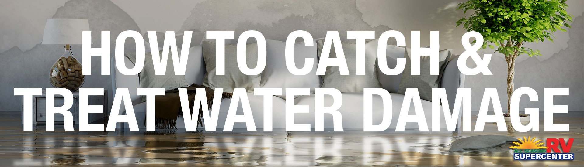 How to Catch and Treat Water Damage