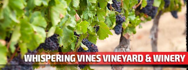 Whispering Vines Vineyard & Winery