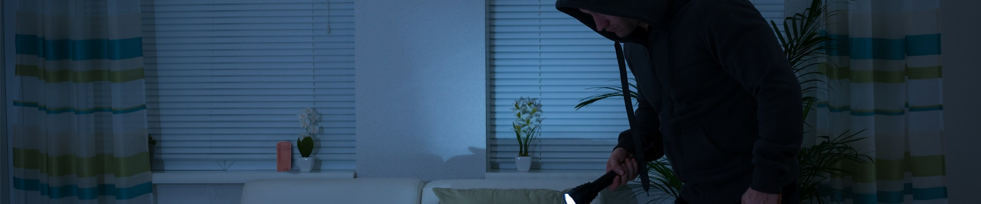 burglar in house at night with flowers and deodorant on window sills