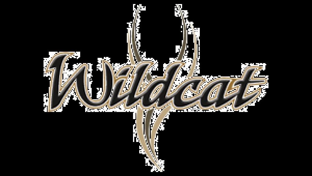 Wildcat RV