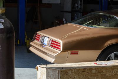 1979 Pontiac FIREBIRD Photo